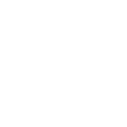 WordPress Develoment | zoing.ly